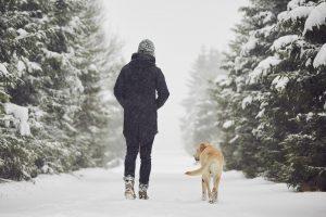 recomendaciones para hacer senderismo en invierno