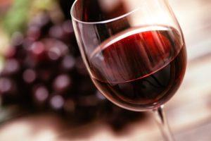 un buen vino por los sentidos